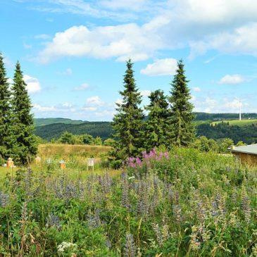 Erzgebirge-Relaxing oder wieso ein Familienhotel mal unglaublich gut tut