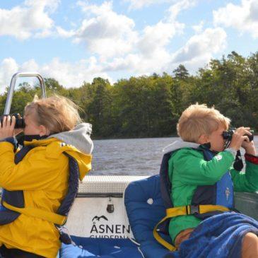 Unser Roadtrip im Norden: Von Fehmarn nach Schweden bis Finnland und zurück
