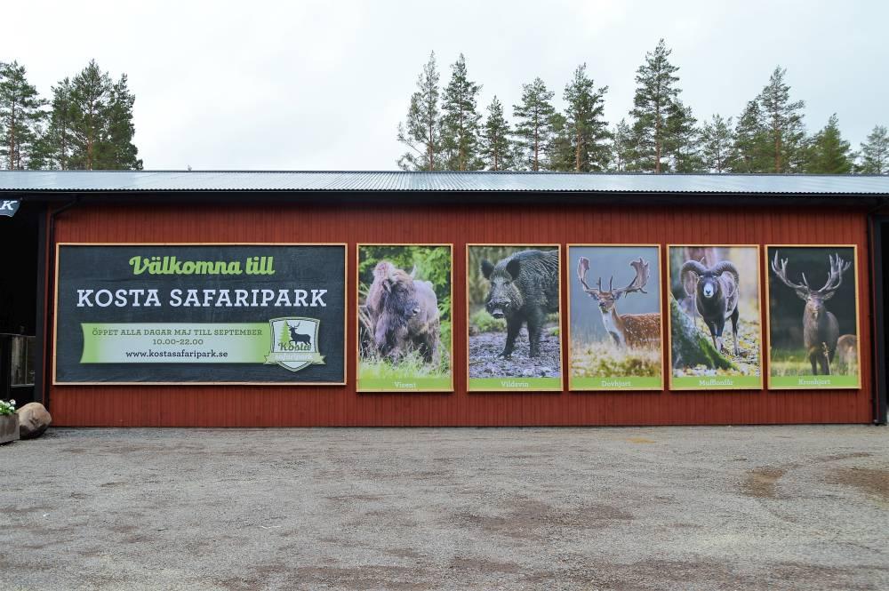 Kosta Safaripark