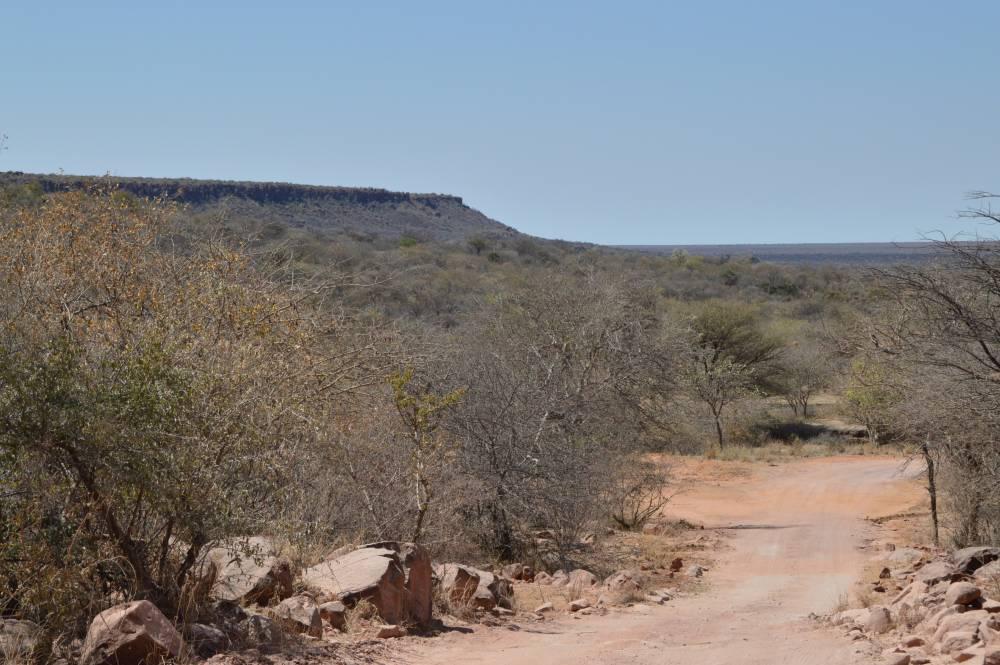 Namibia mit Kindern Waterberg