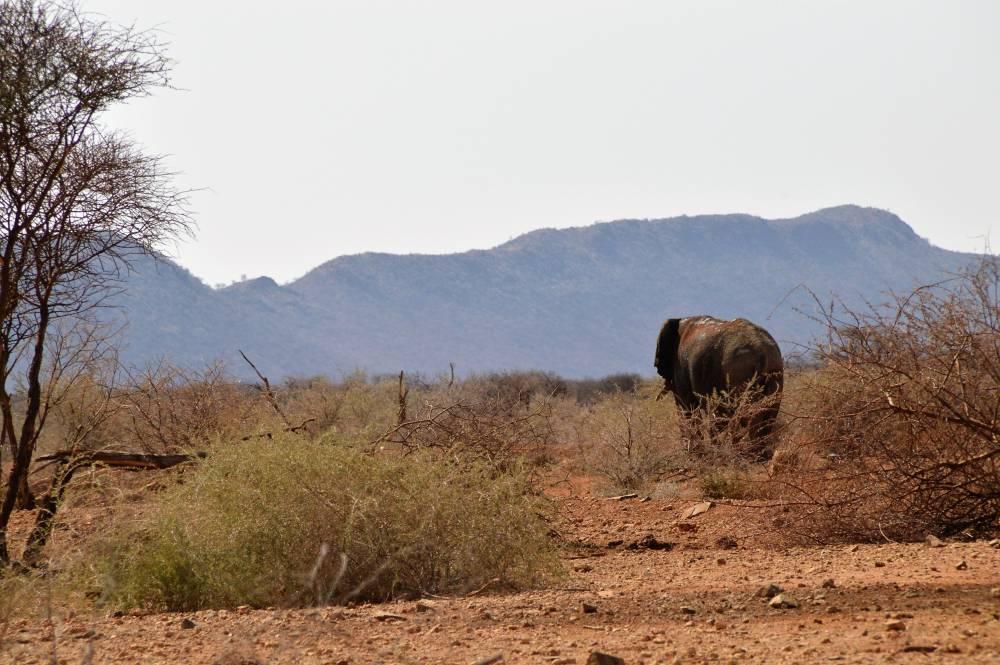 Namibia mit Kindern