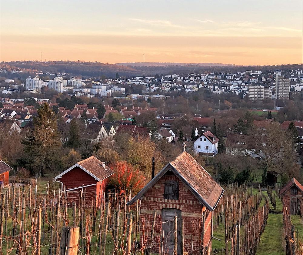 Ausflüge mit Kindern rund um Stuttgart: Die Weinberge